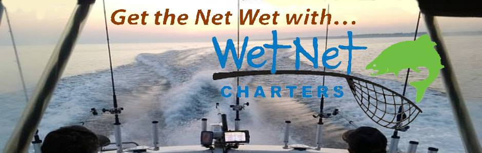 Let's GET THE NET WET!